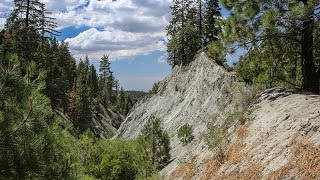 San Andreas Fault Tour near Wrightwood