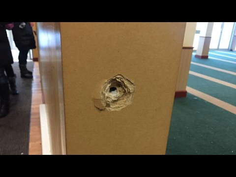 GRAPHIC WARNING: 1st images from inside Québec mosque