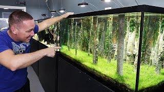 my-best-aquarium