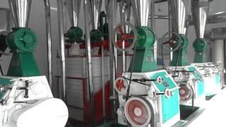 Machine de traitement de blé et fabrication de farine Chine