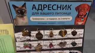 Бетховен.Адресник, жетон для вашей собаки, кошки. Обязательное приобретение.
