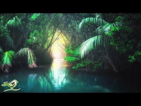 Relaxing Harp Music: Peaceful Music, Sleep Music, Meditation Music, Soothing Music ★80