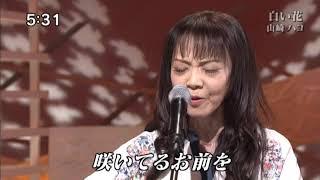 山崎ハコ - 白い花