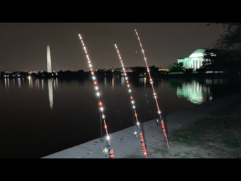 AMAZING NIGHT FISHING RODS, CHUNKY CATS CUSTOM WRAP