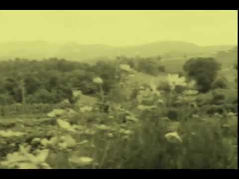 Harold Budd & Brian Eno - Above Chiang Mai (Hill Country)