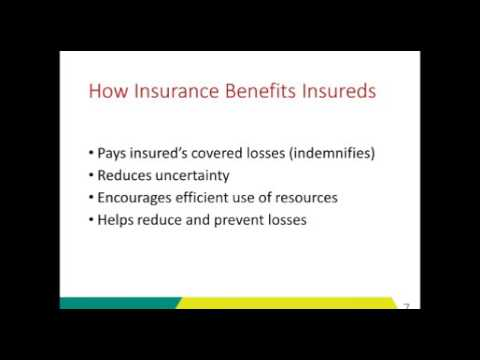 Risk Management And Insurance Fundamentals
