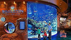 Silverton Casino & Bass Pro Shops in Las Vegas!