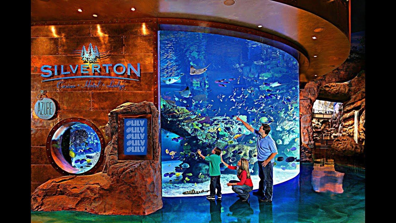 Silverton casino bass pro shops in las vegas youtube for Fish store las vegas