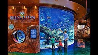 Silverton Casino & Bass Pro Shops in Las Vegas!