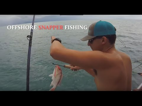 Offshore Snapper Fishing | Galveston, Tx