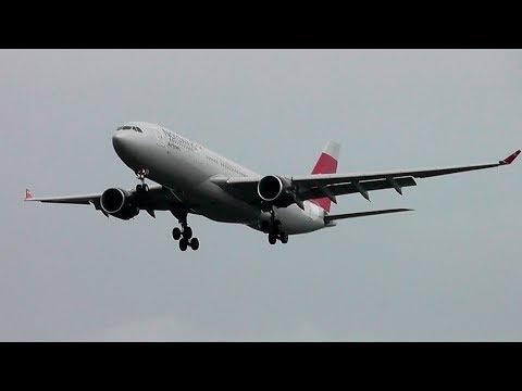 Airbus A332 (A330-223) / Аэропорт Шереметьево