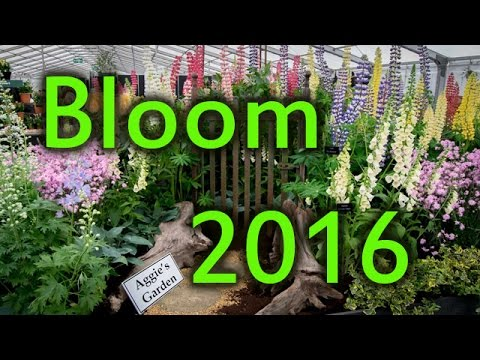 Bloom 2016 Ireland's Largest Garden Festival in Photos and Video