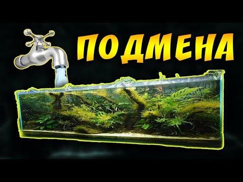 Вопрос: Как производить подмену воды в пресноводном аквариуме?