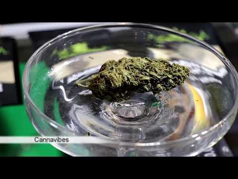 CannaVibes Athens Cannabis