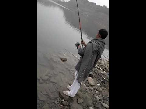 Carp fishing in Pakistan
