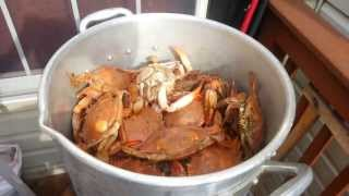 Firing Up the Grill and Steaming the Crabs