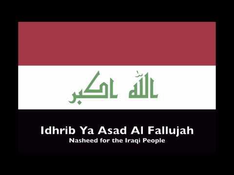 Idhrib Ya Asad Al Fallujah