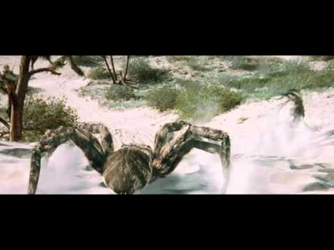 Pavoučí teror CZ