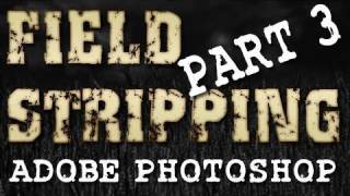 Field Stripping a FIELD STRIPPING video - **FINAL** Using Photoshop to Edit Gameplay (Part 3)
