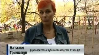 Вести-Хабаровск. Мошенники и собаководы