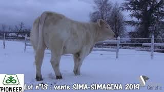 LOT 13 - vente SIMA 25 février 2019 (Villepinte 93) - Simon Genetic