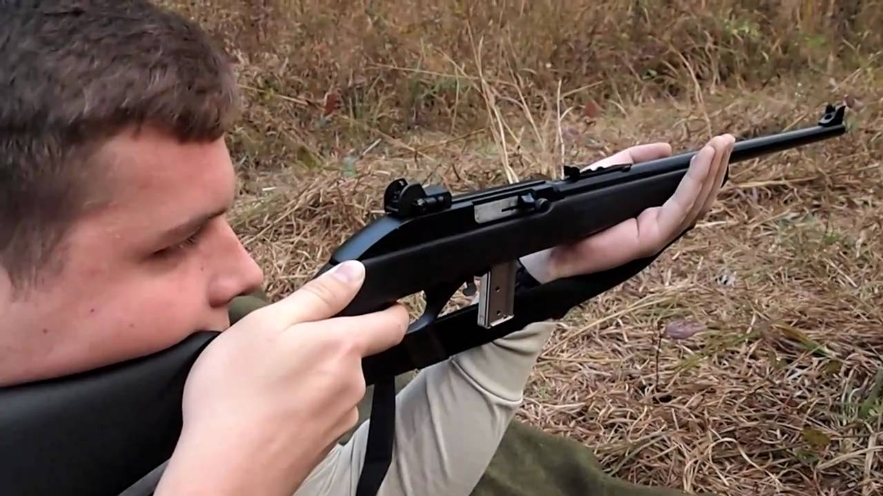 Marlin 795 22lr With Tech Sights Appleseed Style Shooting