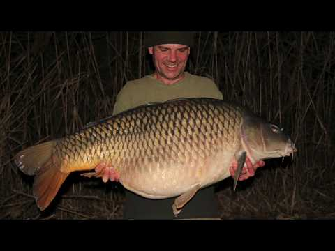 Carp Fishing In Italy - In Session