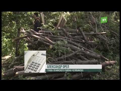 Чиновники просят челябинцев одобрить строительство сквера Юрия Гагарина в Ленинском районе