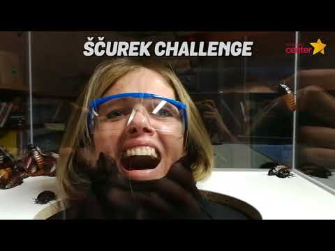 Tanja in Kori 500eur challenge - Ekstremne karaoke s ščurki