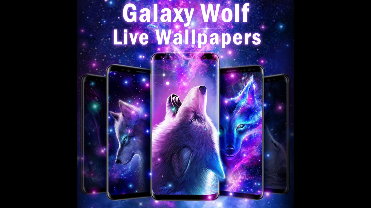 Night Sky Wolf Live Wallpaper Apk 2 4 1 Download For Android Download Night Sky Wolf Live Wallpaper Xapk Apk Bundle Latest Version Apkfab Com
