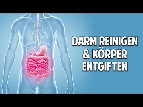 DARM REINIGEN & KÖRPER ENTGIFTEN - Die unglaubliche Kraft der Bitterstoffe