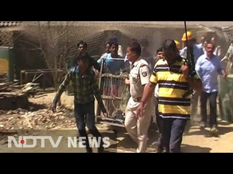 Meerut: Leopard caught after hours of operation by forest officials
