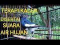 Terapi Dan Pancingan Kacer Disertai Suara Gemericik Air Hujan  Mp3 - Mp4 Download