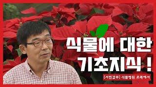 식물병원 초록에서 (사)한국화원협회 전문가 교육강의(미…