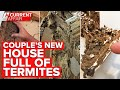 Millions of termites found in walls of couple's new home   A Current Affair