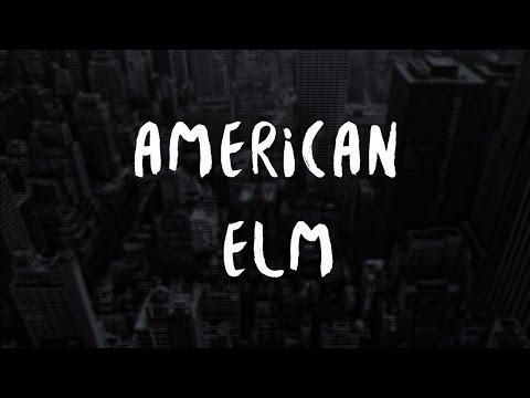 American Elm - Evaporate