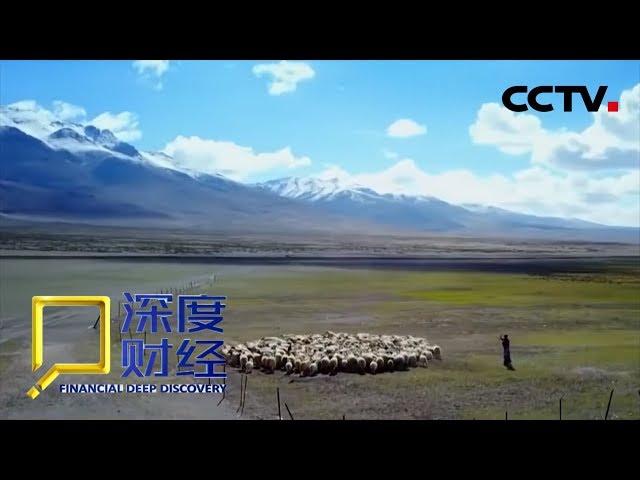《深度财经》 改革再出发:打赢蓝天保卫战 20190105 | CCTV财经