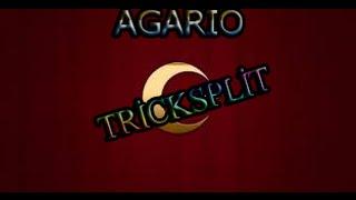 Agario  #1 TrickSplit OMG!!