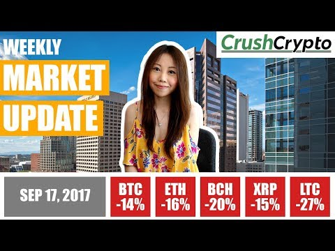 Weekly Update: China Halts Crypto Trading / China ICO Ban Temporary / Jamie Dimon vs. Bitcoin