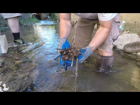 Magnet Fishing & Sifting City Creek: Civil War find w/The Bearded One