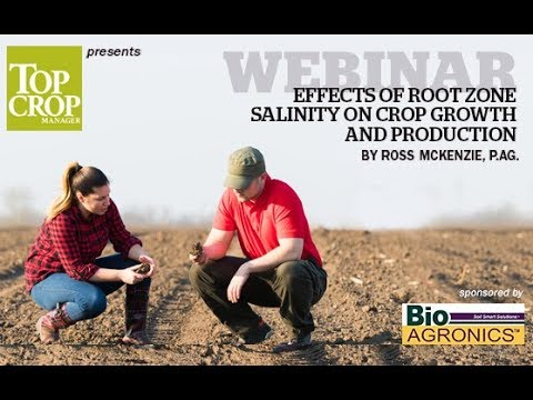 WEBINAR: Effects of root zone salinity on crop growth and production