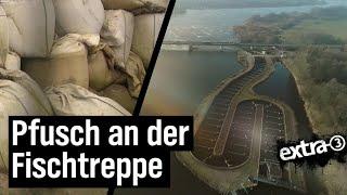 Realer Irrsinn: Pfusch an der Fischtreppe in Geesthacht
