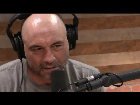 Joe Rogan Asks Futurist if He's Scared of Artificial Intelligence
