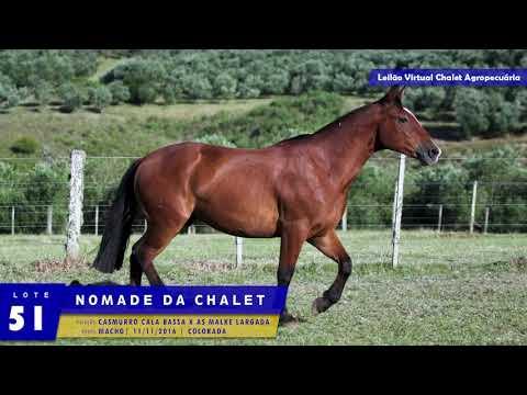 LOTE 51 - Nômade da Chalet