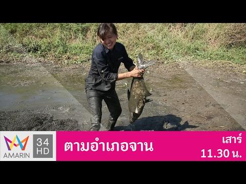 ตามอำเภอจาน : ต้มยำปลาและน้ำพริกมะดัน อ.บ้านนา จ.นครนายก 4 ก.พ. 60 (1/3)