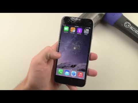 Видео приколы скачать на телефон бесплатно 3gp и mp4