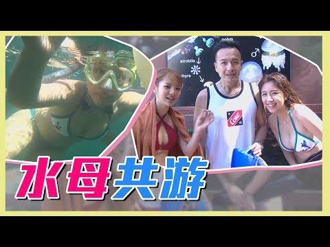 【鮪魚辜莞允與百萬水母共遊!潛進彩虹故鄉~】愛玩客 精華