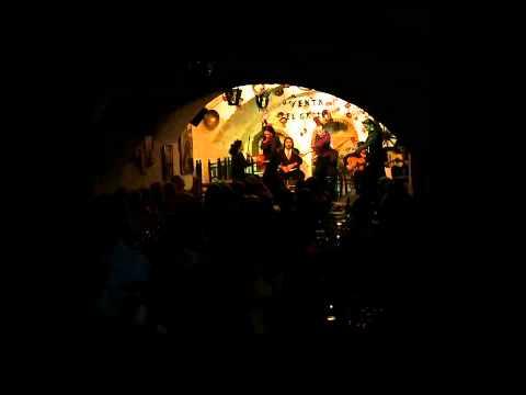 Venta el gallo - Restaurante Tablao Flamenco en Granada