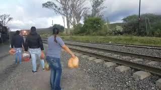 Mujer rompe en llanto, tras la experiencia de lanzar comida a migrantes que van en La Bestia