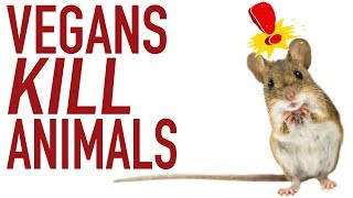Vegans Kill Animals! More Than Meat-Eaters?